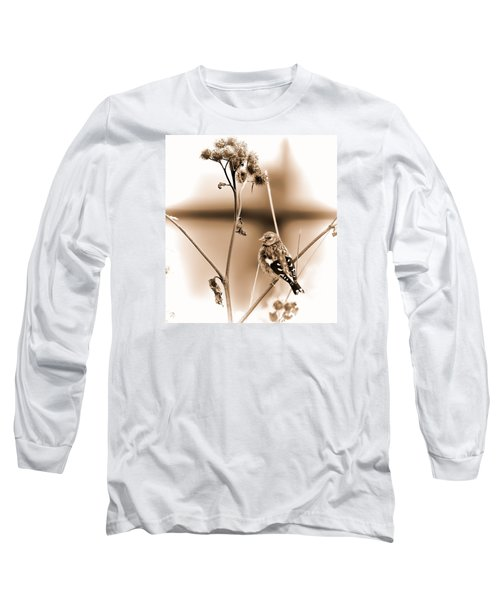 Long Sleeve T-Shirt featuring the photograph Looking Sep Small Brown Grey Yellow And Black Bird Posing For Portrait On A Branch Of A Plant by Leif Sohlman