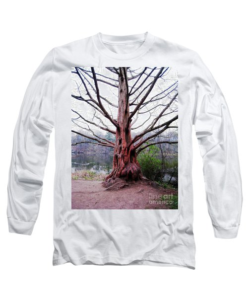 Long Sleeve T-Shirt featuring the photograph Magic Tree by Nina Silver