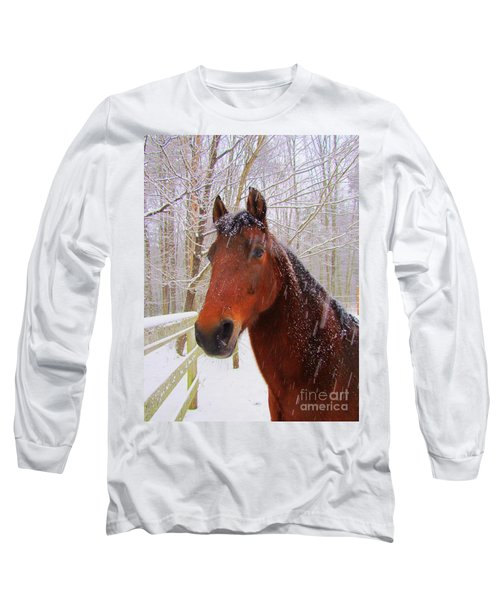 Majestic Morgan Horse Long Sleeve T-Shirt