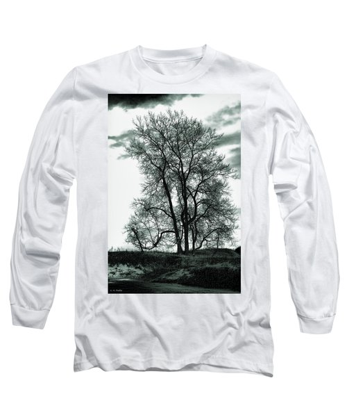 Long Sleeve T-Shirt featuring the photograph Majesty by Lauren Radke
