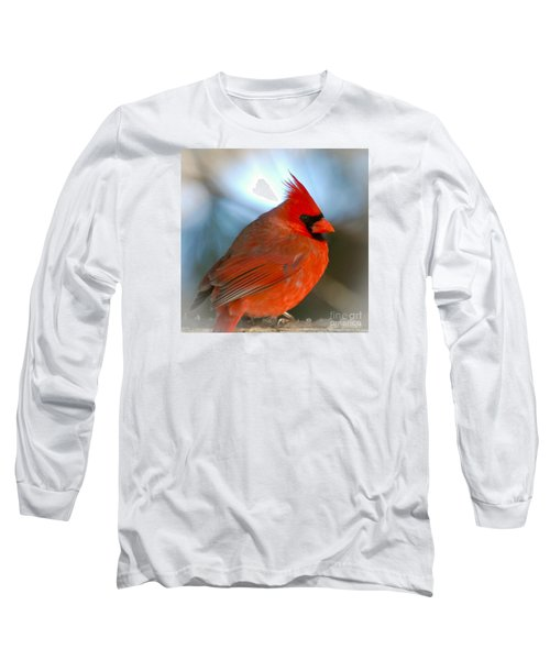 Male Cardinal  Long Sleeve T-Shirt by Kerri Farley
