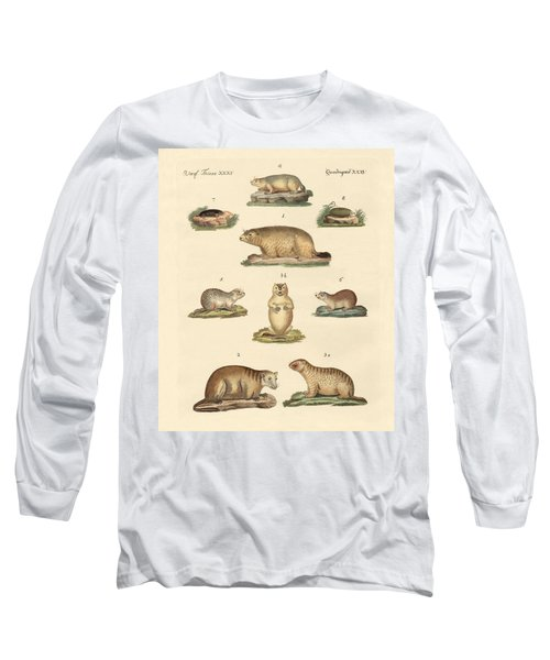Marmots And Moles Long Sleeve T-Shirt by Splendid Art Prints
