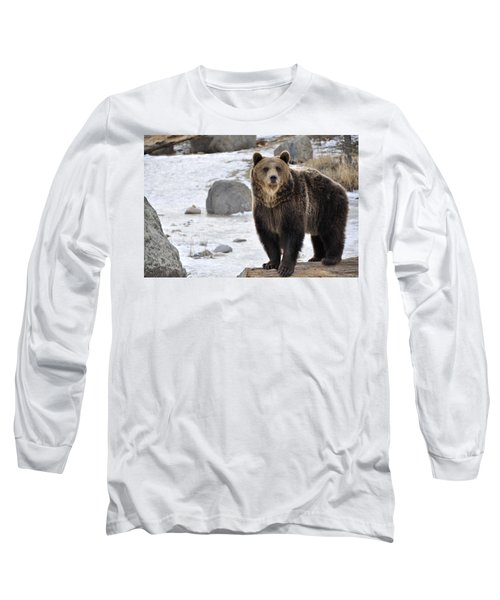Montana Grizzly  Long Sleeve T-Shirt by Fran Riley