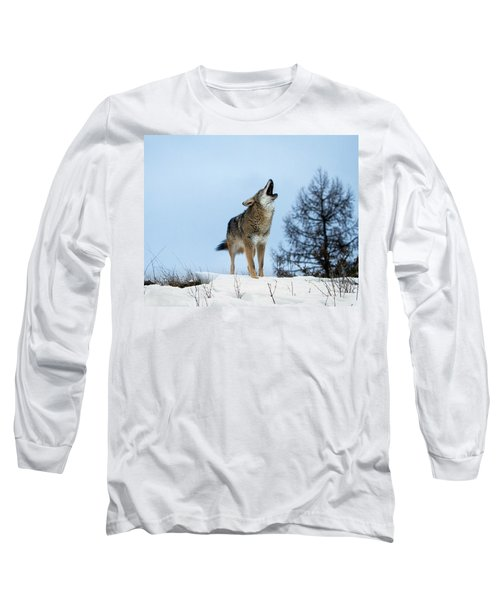 Long Sleeve T-Shirt featuring the photograph Morning Howl by Jack Bell