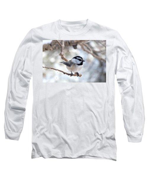 Mountain Chickadee On Branch Long Sleeve T-Shirt
