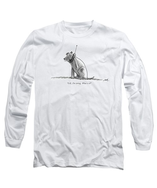 O.k., I'm Sitting.  What Is It? Long Sleeve T-Shirt