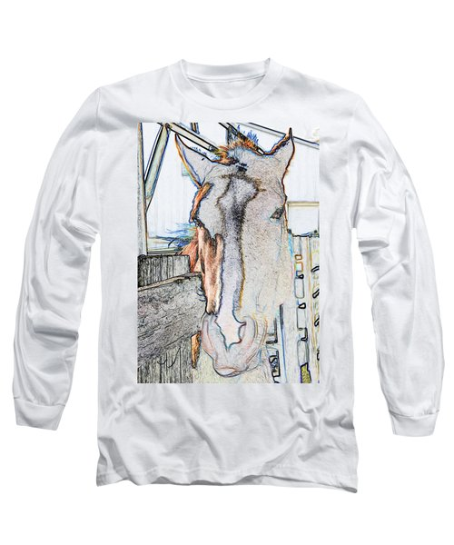 Old Paint Long Sleeve T-Shirt