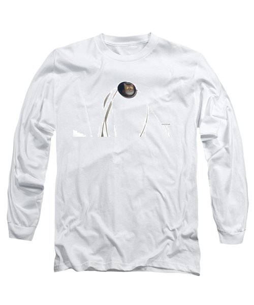 Long Sleeve T-Shirt featuring the photograph Olga Cat Reflected In Drawer Knob by Kathy Barney