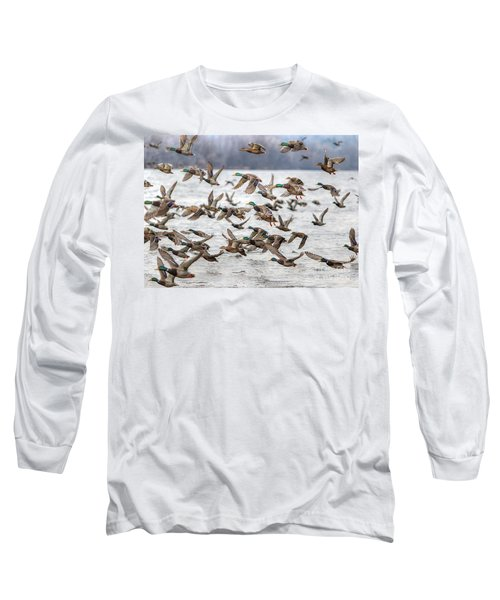 Long Sleeve T-Shirt featuring the photograph One Direction One by Robert Pearson