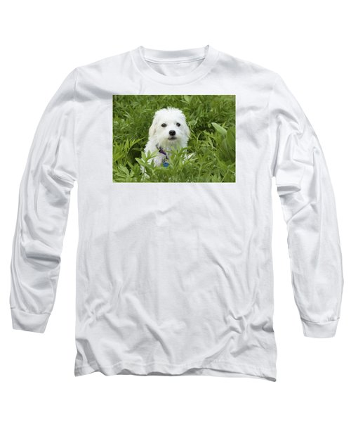 Long Sleeve T-Shirt featuring the photograph Oops Busted - Cute White Dog by Jane Eleanor Nicholas