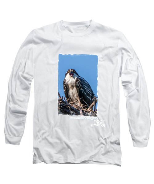 Osprey Surprise Party Card Long Sleeve T-Shirt