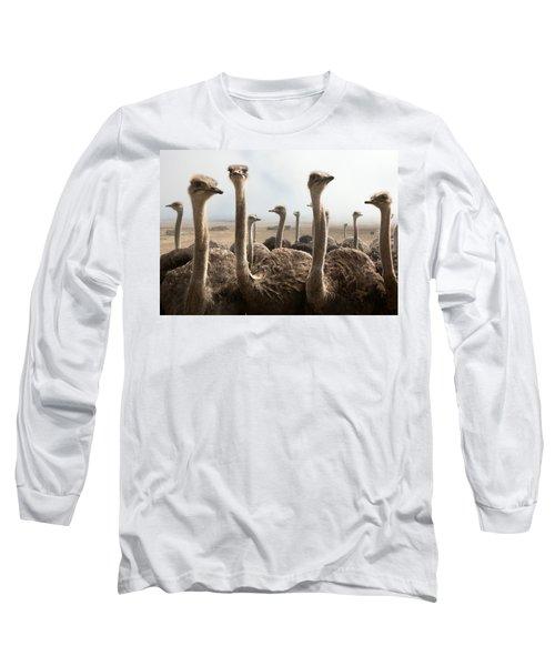 Ostrich Heads Long Sleeve T-Shirt