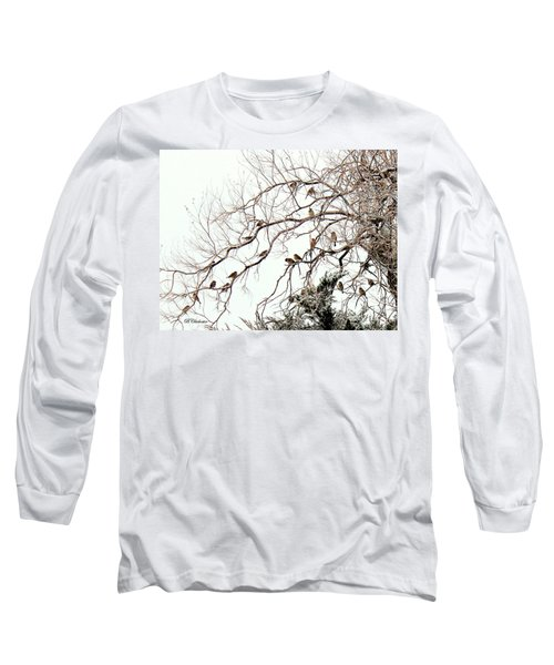 Long Sleeve T-Shirt featuring the photograph Out On A Limb First Snow by Barbara Chichester