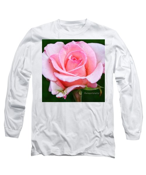 Pale Pink Beauty Long Sleeve T-Shirt