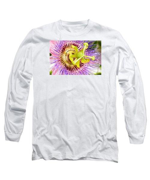 Passiflora The Passion Flower Long Sleeve T-Shirt by Olga Hamilton