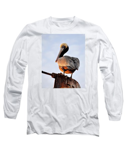 Pelican Looking Back Long Sleeve T-Shirt by AJ  Schibig