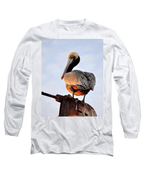 Pelican Looking Back Long Sleeve T-Shirt