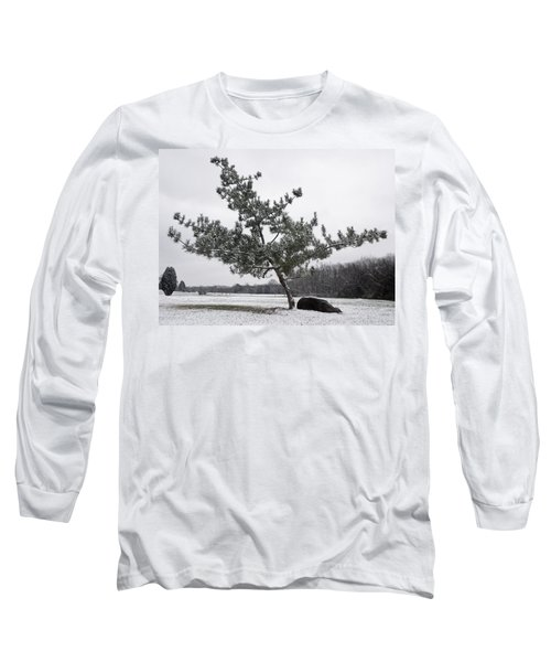 Pine Tree Long Sleeve T-Shirt by Melinda Fawver