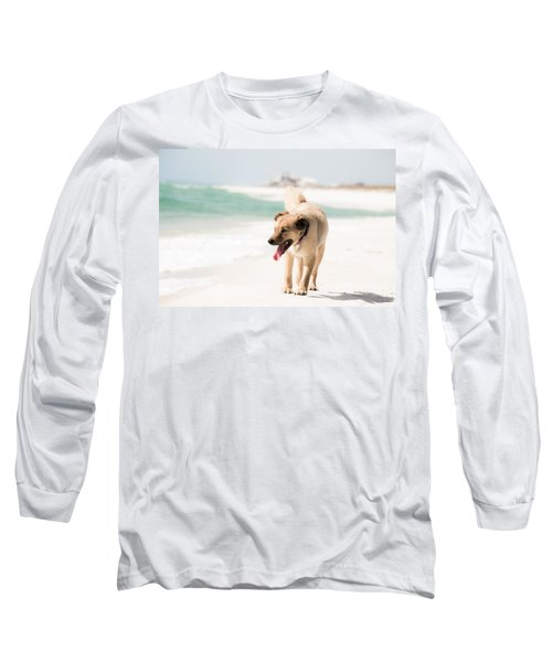 Play Buddy Long Sleeve T-Shirt by Shelby  Young