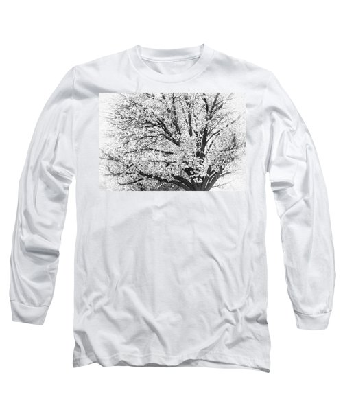 Long Sleeve T-Shirt featuring the photograph Poetry Tree by Roselynne Broussard