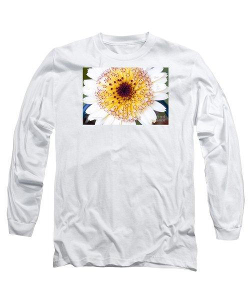 Pot Marigold Citrus Smoothies Long Sleeve T-Shirt