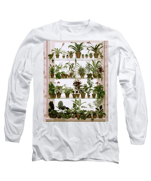 Potted Plants On Shelves Long Sleeve T-Shirt