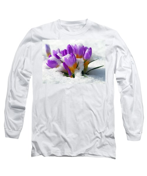 Purple Crocuses In The Snow Long Sleeve T-Shirt