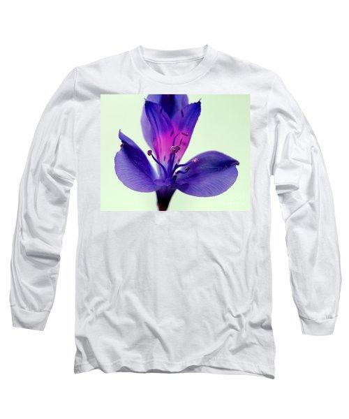 Rare Beauty Long Sleeve T-Shirt