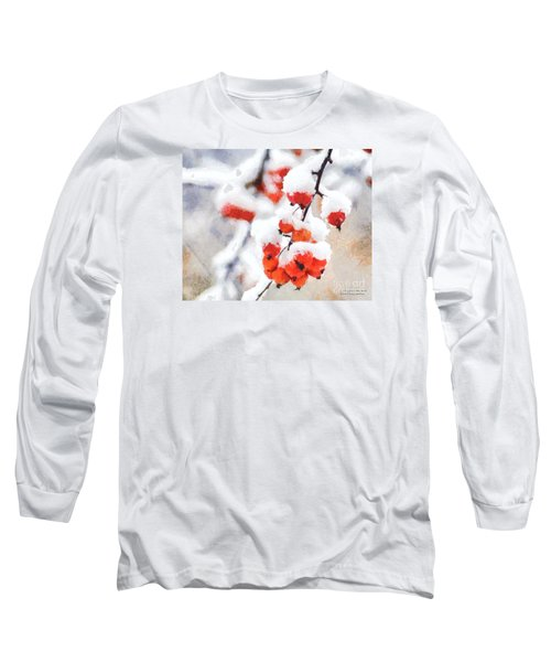 Red Crabapples In The Winter Snow - A Digital Painting By D Perry Lawrence Long Sleeve T-Shirt by David Perry Lawrence