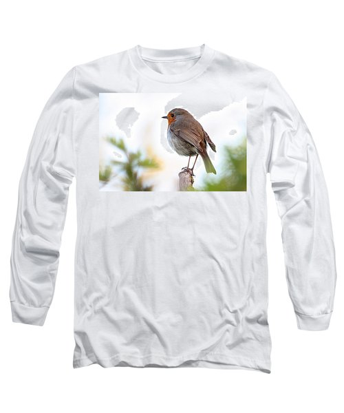 Robin On A Pole Long Sleeve T-Shirt