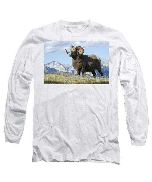 Rocky Mountain Big Horn Sheep Long Sleeve T-Shirt by Bob Christopher