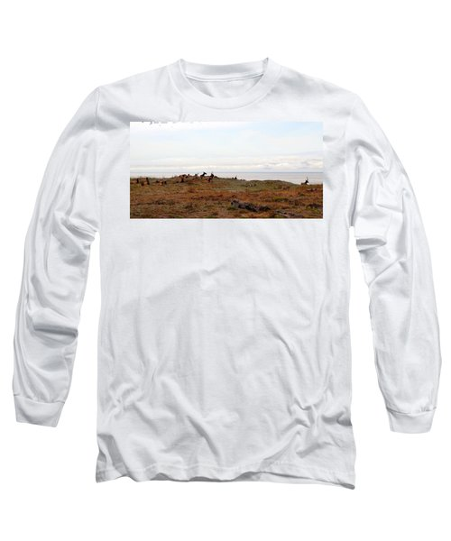 Roosevelt Elk And The Ocean Long Sleeve T-Shirt