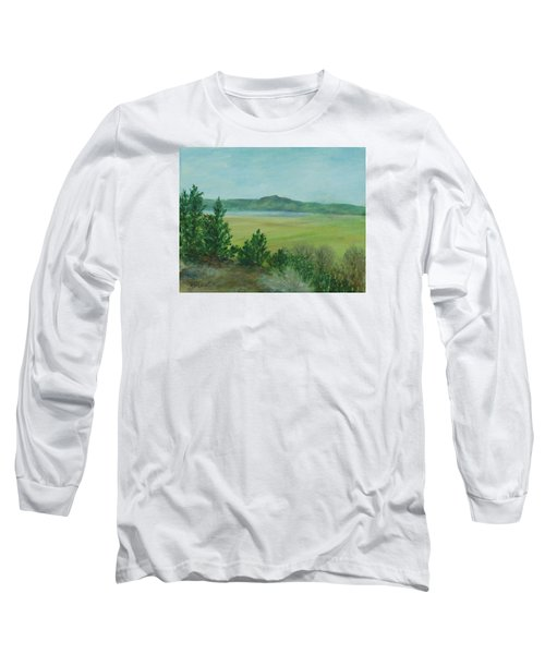 Rural Landscape Art Original Colorful Oil Painting Swan Lake Oregon  Long Sleeve T-Shirt
