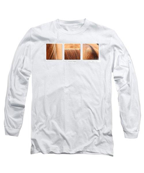 Salon D'equus Light Long Sleeve T-Shirt by Michelle Twohig