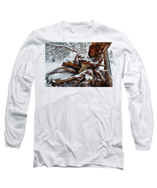 Long Sleeve T-Shirt featuring the photograph San Jacinto Fallen Tree by Kyle Hanson