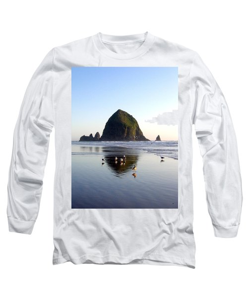 Seagulls And A Surfer Long Sleeve T-Shirt