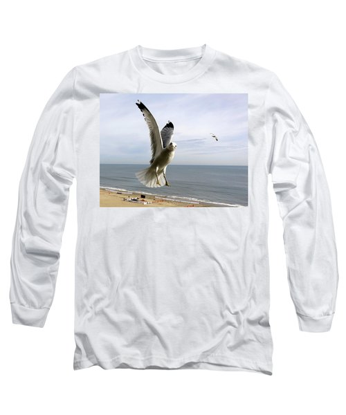 Inquisitive Seagull Long Sleeve T-Shirt