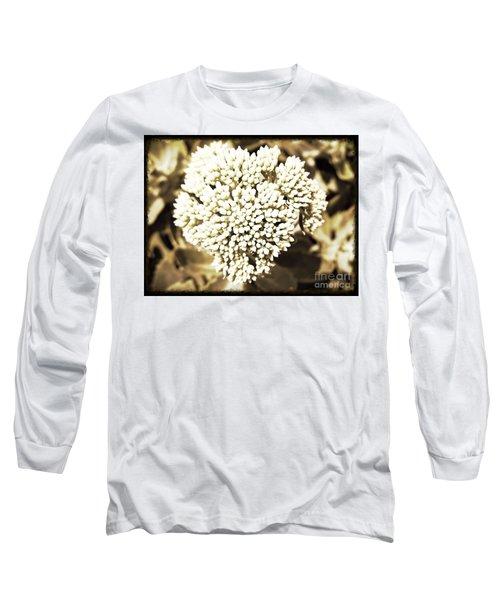 Sedum In The Heart Long Sleeve T-Shirt by Kimberlee Baxter