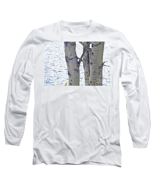 Silver Birch Trees At A Sunny Lake Long Sleeve T-Shirt by Heiko Koehrer-Wagner