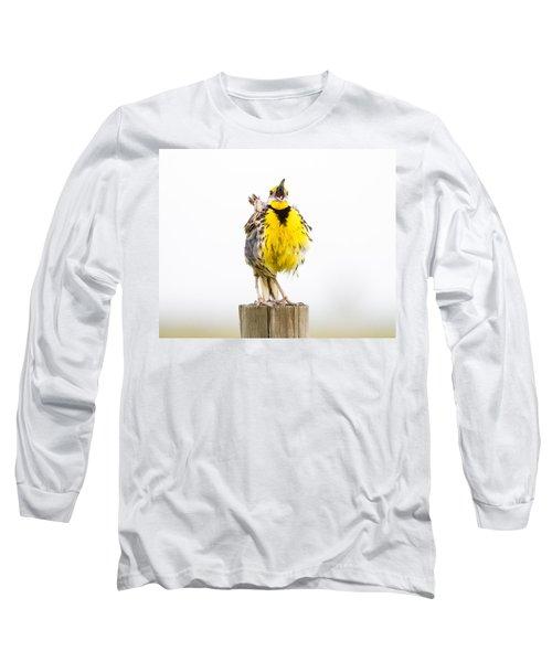 Singing Meadowlark 2 Of 3 Long Sleeve T-Shirt