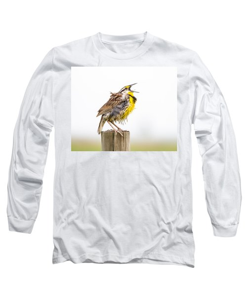 Singing Meadowlark 3rd Of 3 Long Sleeve T-Shirt