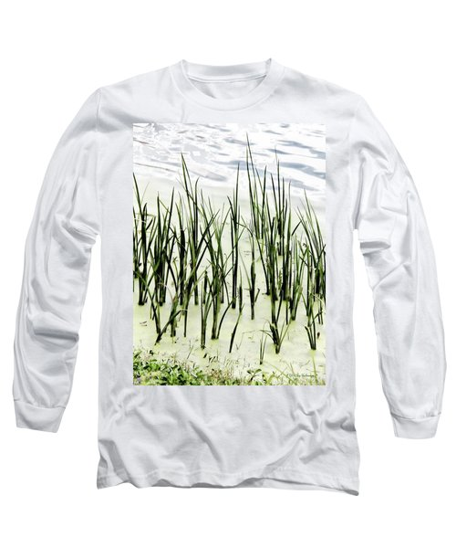Slender Reeds Long Sleeve T-Shirt
