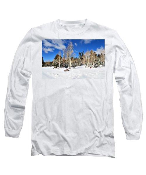 Snowy Aspen Grove Long Sleeve T-Shirt