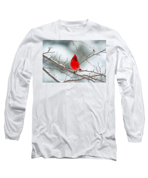 Snowy Cardinal Long Sleeve T-Shirt