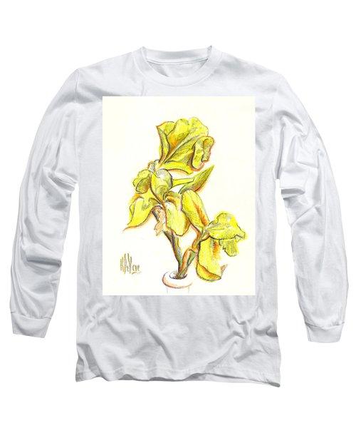 Spanish Irises Long Sleeve T-Shirt by Kip DeVore