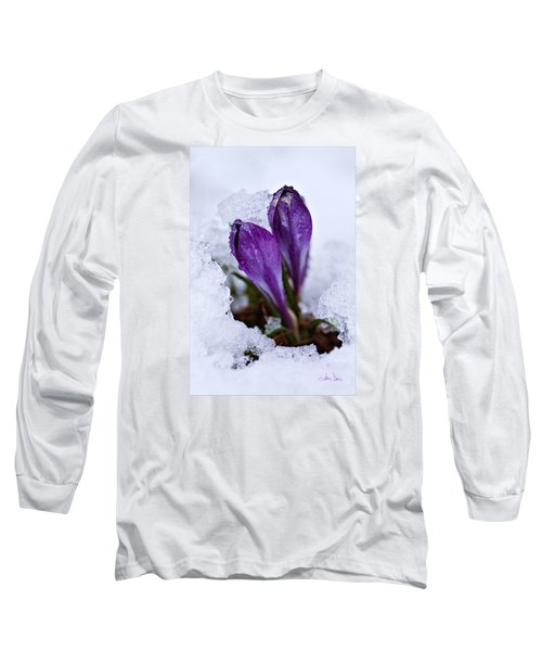 Long Sleeve T-Shirt featuring the photograph Spring Snow by Joan Davis