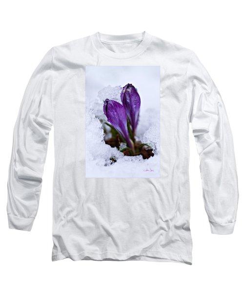 Spring Snow Long Sleeve T-Shirt by Joan Davis