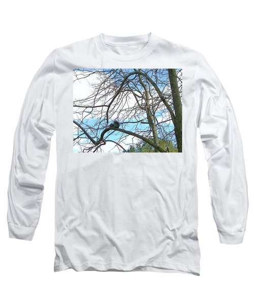 Long Sleeve T-Shirt featuring the photograph Squirrel Maze by Pamela Hyde Wilson