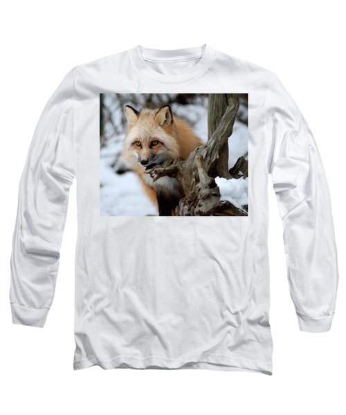 Stunning Sierra Long Sleeve T-Shirt by Richard Bryce and Family