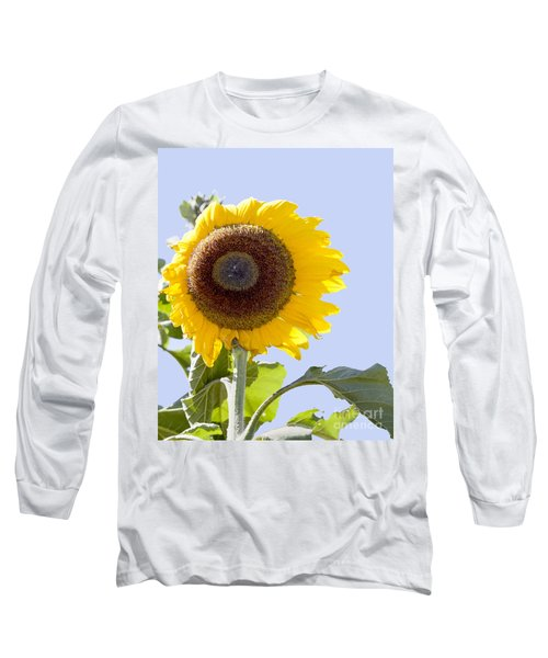 Sunflower In The Blue Sky Long Sleeve T-Shirt by David Millenheft